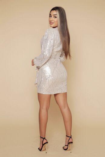 Liv Mermaid Sequin Dress Silver