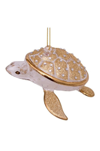 Eve Turtle Silver/Gold